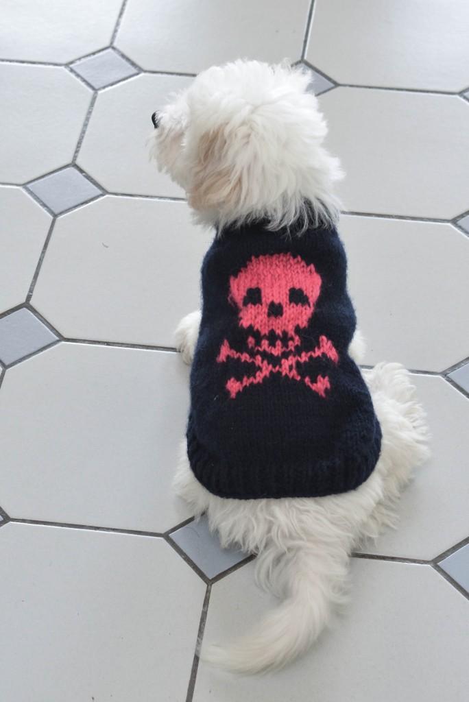 rock dog charlov