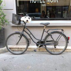 Les moufles de vélo #2